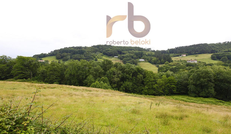 ROBERTO BELOKI - C1189_05-M copia
