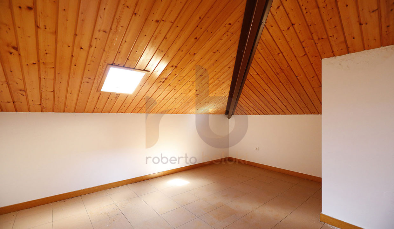 Roberto Beloki - DP1198 (24)-M copia